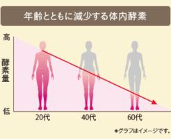 年齢とともに減少する体内酵素