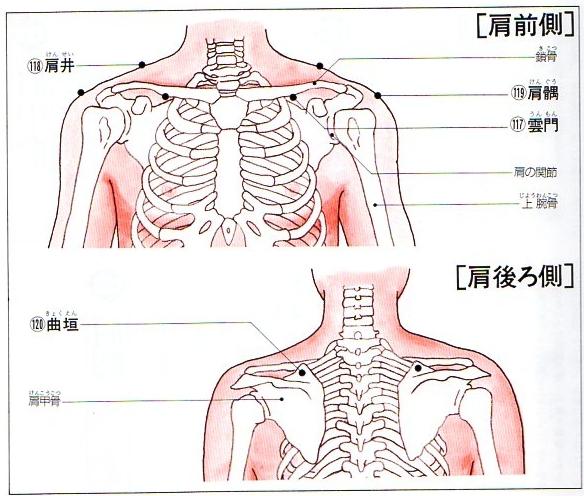 肩のツボー肩井・曲垣