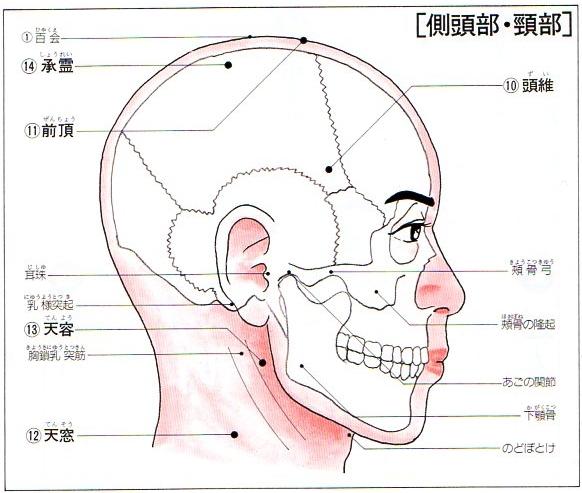 首のツボー天容・天窓・承霊・前頂・頭維