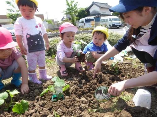 川越小仙波保育園の雰囲気-1