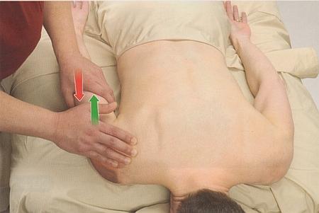 三角筋後部の触診