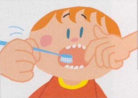 1歳から 2歳の歯の磨き方