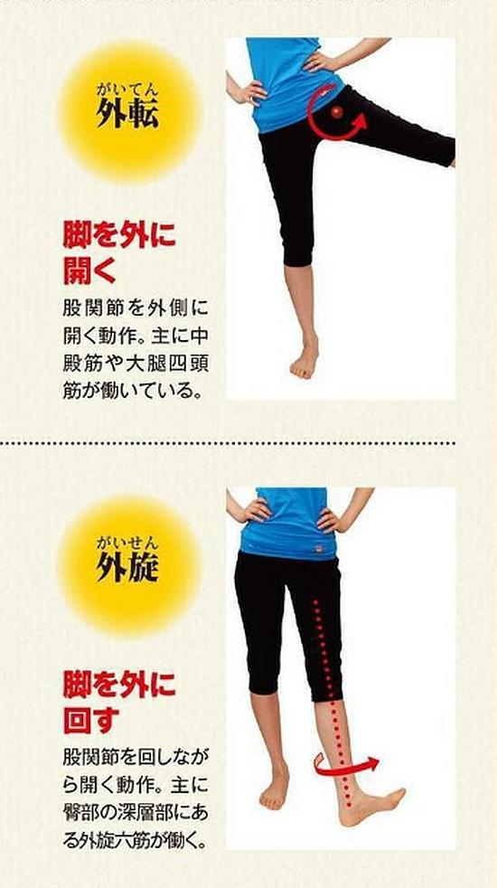 股関節の外転、外旋