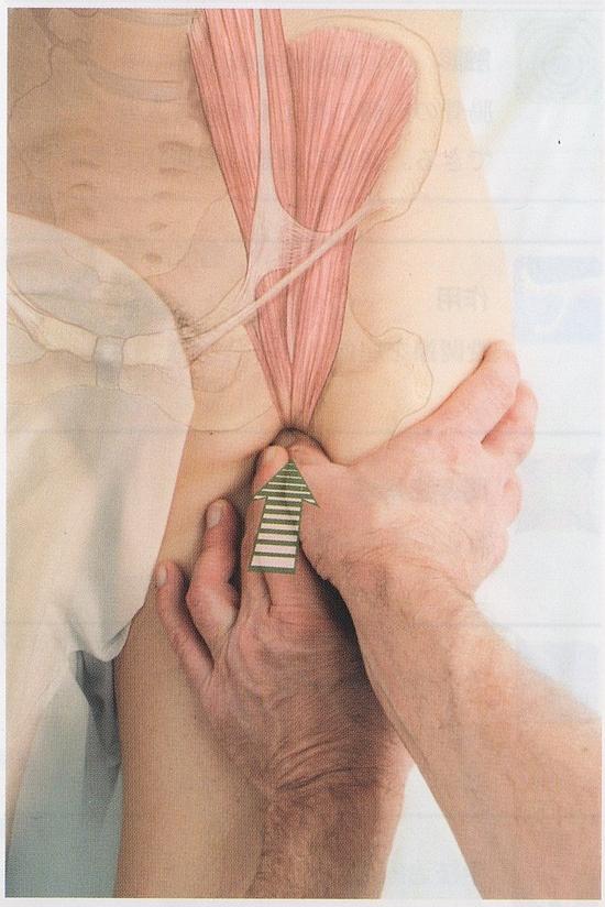 腸腰筋のマッサージ6