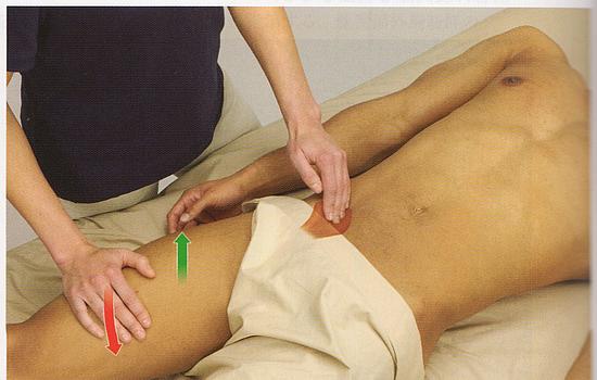 腸腰筋の触診