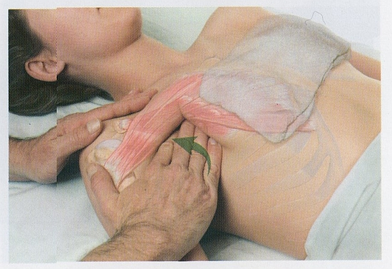 小胸筋のマッサージ1
