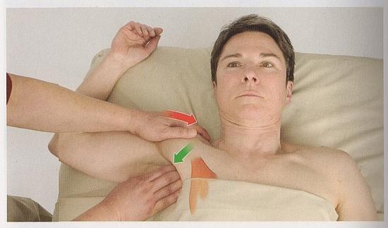 小胸筋の触診