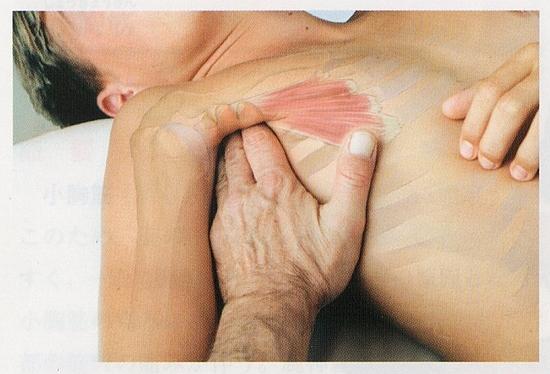 小胸筋のマッサージ2