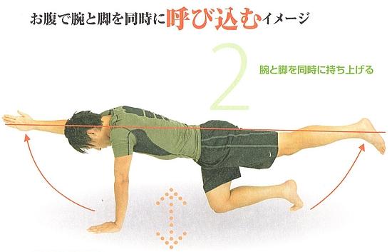 大円筋の強化2