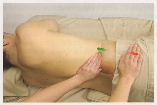 腰方形筋の触診2