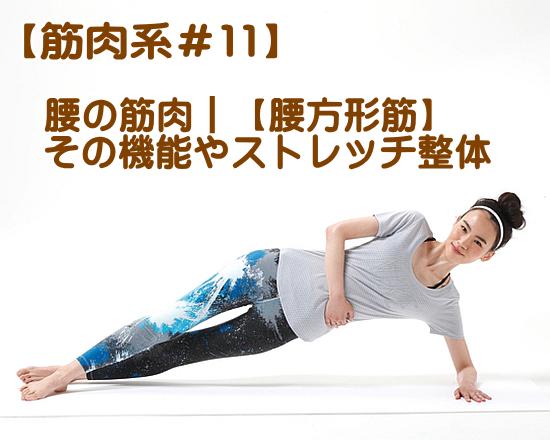 腰方形筋の機能ストレッチ整体