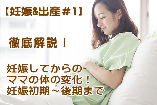 妊娠によるママお体の変化