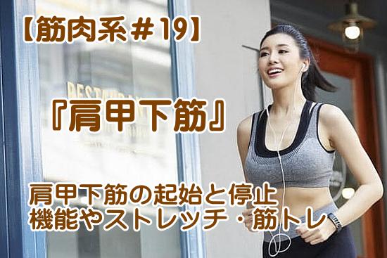 肩甲下筋の作用