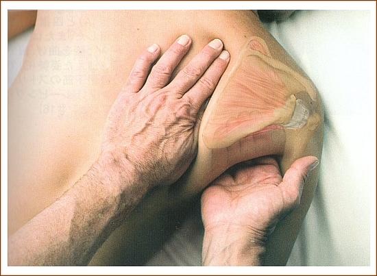 肩甲下筋のマッサージ1