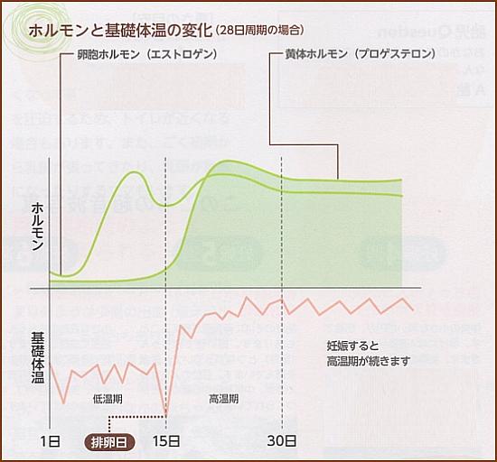 ホルモンと基礎体温の変化(28日周期の場合)