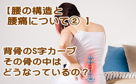 腰の構造と腰痛について