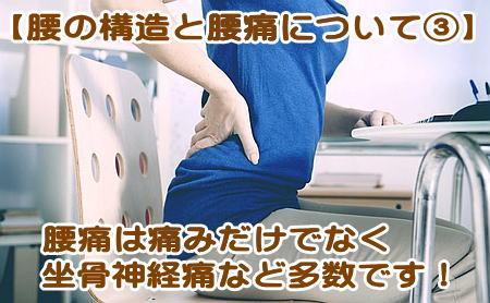 腰痛の一種、坐骨神経痛
