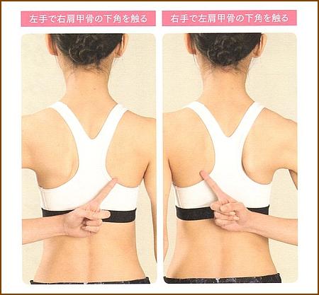 肩甲骨の下角を触れますか?