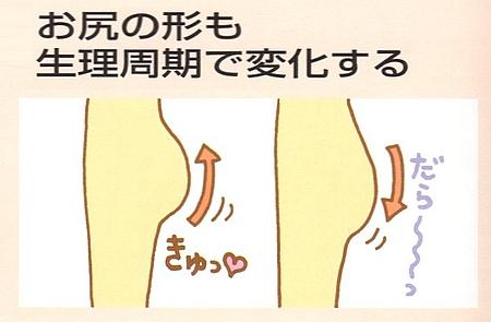 女性は生理中と生理前後で骨盤が開閉