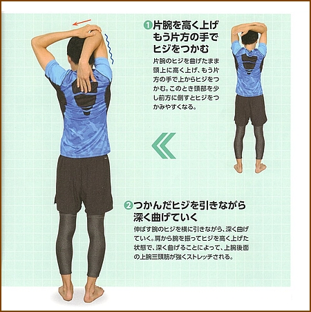 上腕三頭筋のストレッチ(基本)1