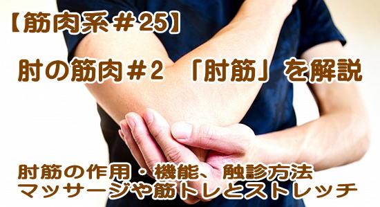 肘筋について解説。機能的解剖や作用、起始・停止、触診やマッサージやほぐし方