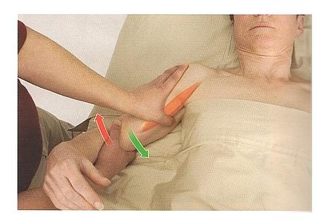 烏口腕筋の触診方法