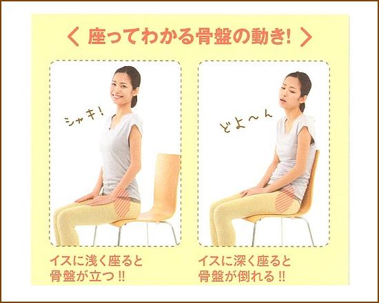 座っているとわかる骨盤の位置関係