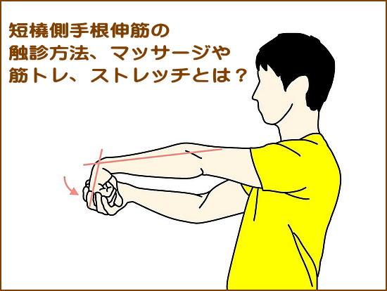 手首の強い伸展力が要求されるスポーツ
