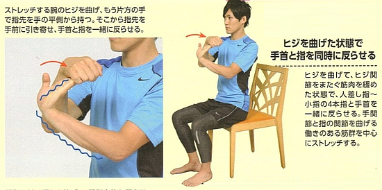 橈側手根屈筋(前腕屈筋群)のストレッチ方法【その4】