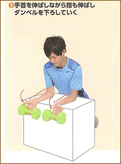前腕の屈筋群を鍛える筋トレ方法 ダンベルリストカール【その2】