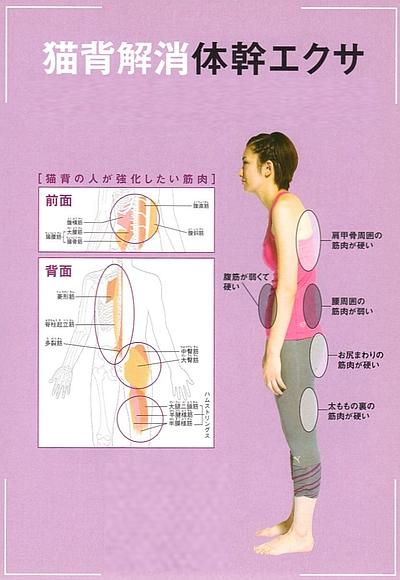 猫背予防体幹エクササイズ