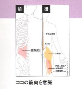意識する筋肉