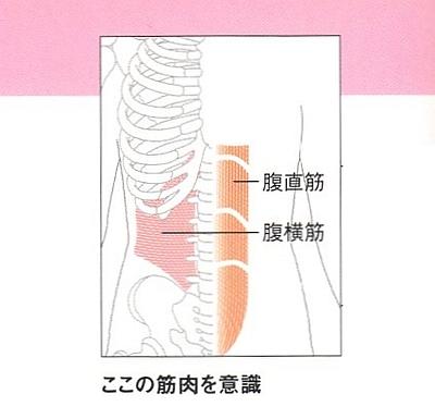 呼吸に合わせて下腹に力を込める呼吸へそ見腹筋の意識する筋肉