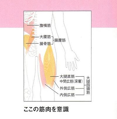 足を持ち上げて腹部の筋肉を強化片足上げ下げの意識する筋肉