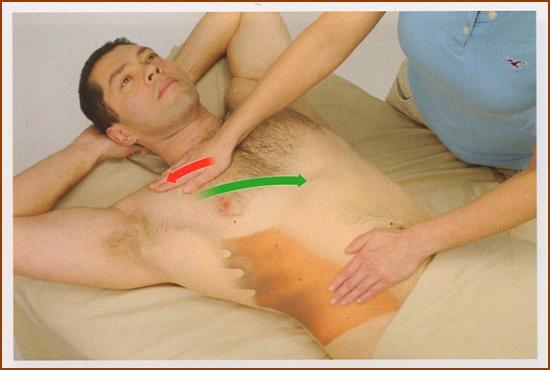 外腹斜筋の触診方法