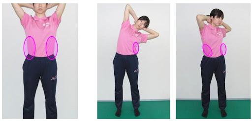 左右の外腹斜筋が作用すると脊柱を屈曲させますま。また、片方側だけで作用すると側屈したり回旋を補助する作用