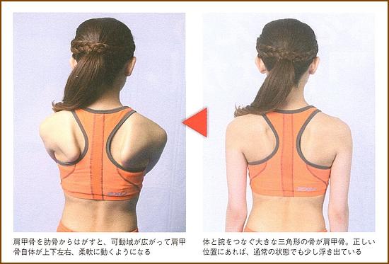 肩甲骨の痛みや肩こりは肩甲骨はがし