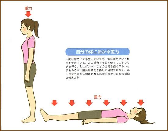 自分の体にかかる重力に伸ばされている感覚