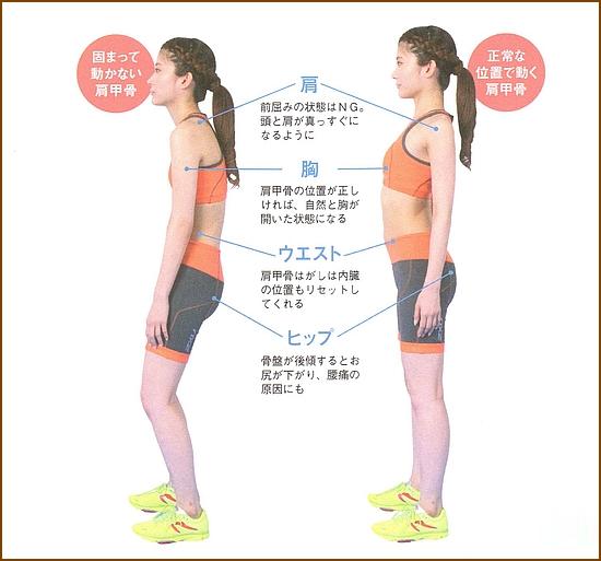 体のバランスがとても良い姿勢が良くなる