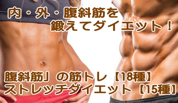 内腹斜筋の筋トレ、ストレッチ、解剖学